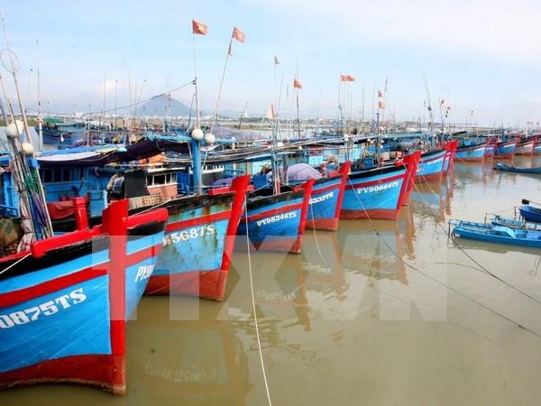 Asociacion de Pesca condena asesinato a pescador vietnamita hinh anh 1