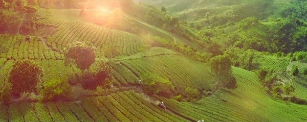 """""""Bienvenidos a Vietnam"""": Invitacion a un pais hermoso y hospitalario hinh anh 7"""