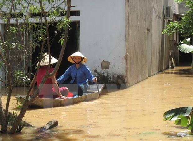 Enormes perdidas en Thanh Hoa por intensas lluvias hinh anh 1