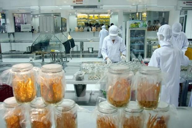 Vietnam presenta proceso de produccion de hongo medicinal hinh anh 1