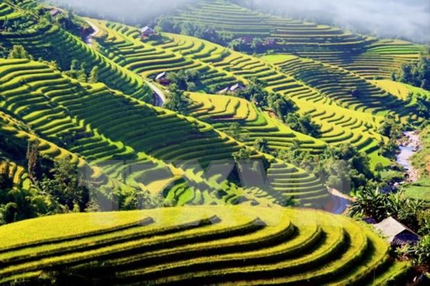Evento cultural honra a pintorescas terrazas de arroz de Hoang Su Phi hinh anh 1