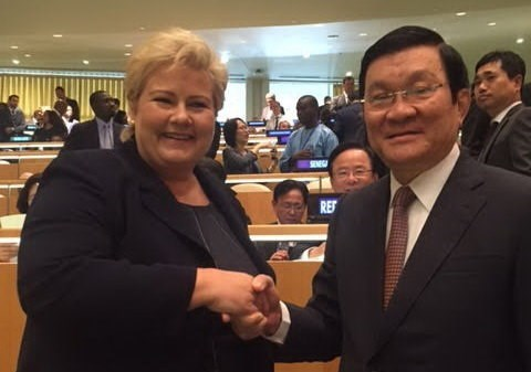 Actividades del presidente vietnamita en marco de Cumbre de ONU hinh anh 1