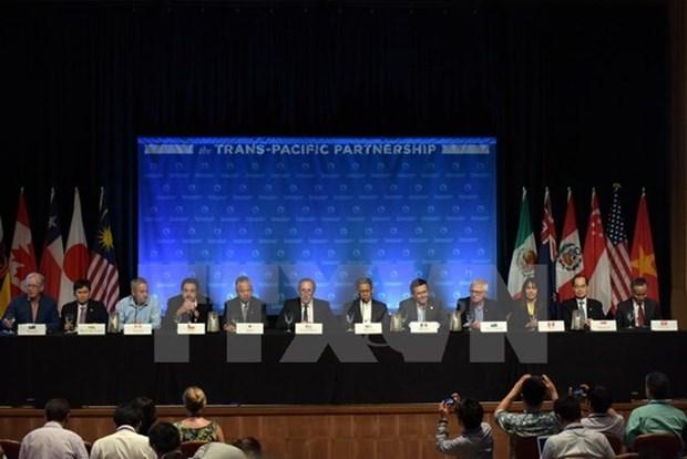 Inician otra ronda de negociacion del TPP en Estados Unidos hinh anh 1