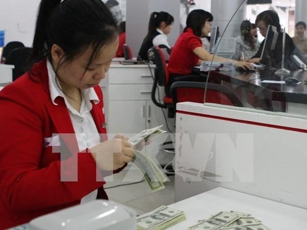 Mercado de divisas mantiene estable ante reajuste de tasa de interes hinh anh 1