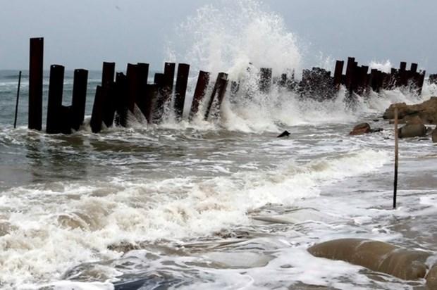 Region nortena de Vietnam en alerta por afectaciones de tifon Mujigae hinh anh 1