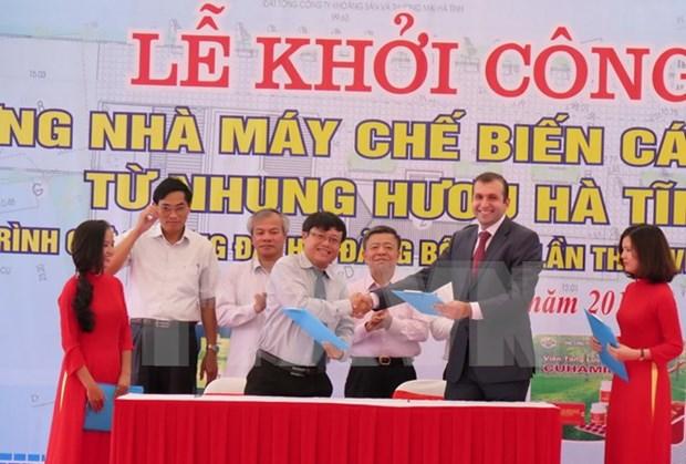 Construyen planta de procesamiento de cuerno de ciervo en Ha Tinh hinh anh 1