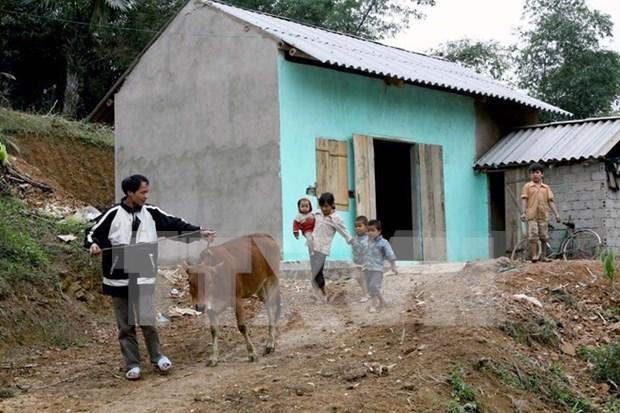 Capital social salva 3,6 millones de hogares de pobreza hinh anh 1