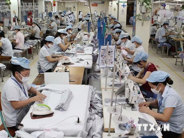 Amplian cooperacion empresarial Vietnam-Alemania hinh anh 1