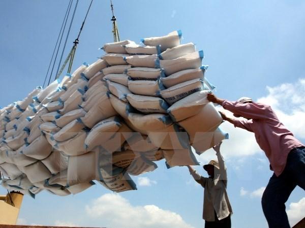 Optimizan exportaciones de arroz vietnamita hinh anh 1