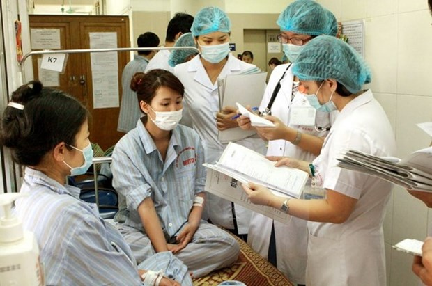 Urgen a Ciudad Ho Chi Minh acelerar medidas contra dengue hinh anh 1