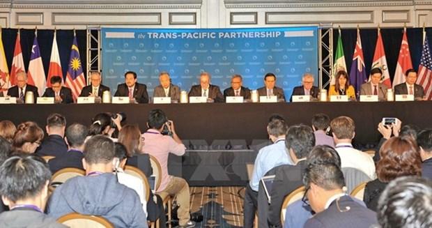TPP- nuevo camino hacia futuro de integracion de Asia- Pacifico hinh anh 1