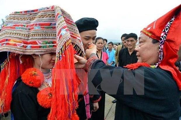 Vietnam ratifica Plan de Accion para igualdad de genero 2016-2020 hinh anh 1