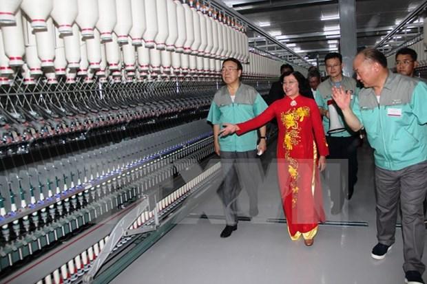 En operacion fabrica de fibra textil en Tay Ninh hinh anh 1