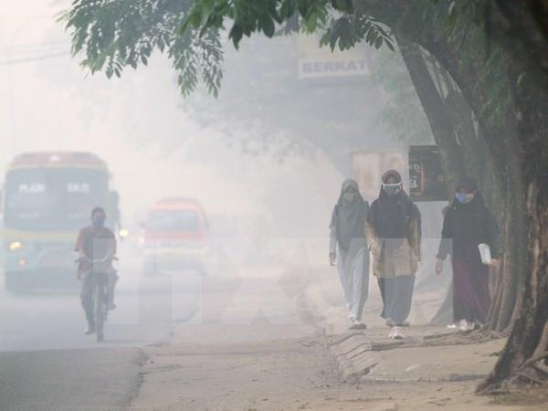 Malasia dispuesta a brindar apoyo en solucion de desastre neblina hinh anh 1