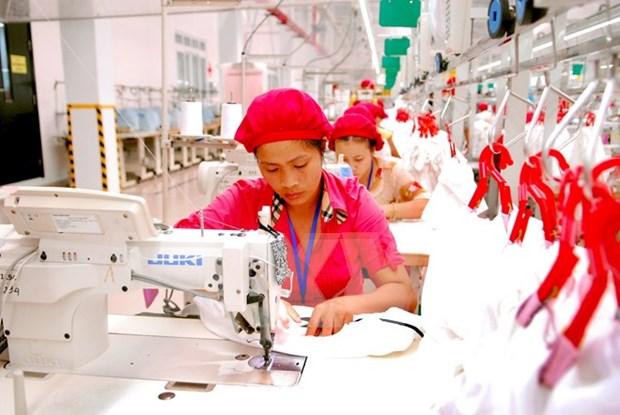 Sector textil de Vietnam despues de la entrada al TPP hinh anh 1