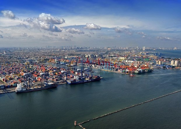 Fomenta Indonesia capacidad de transporte maritimo hinh anh 1