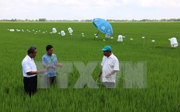 Vietnam comprometido a reducir gases de invernadero en 8% hinh anh 1