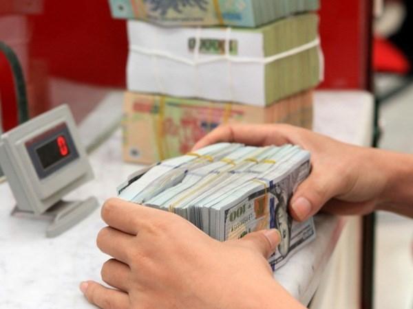 Ajustadas tasas de interes en dolar no genera perdidas para empresas hinh anh 1