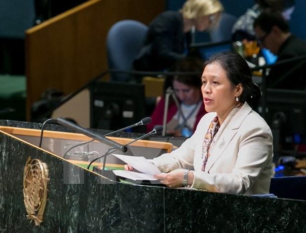 ASEAN elogia papel de la ONU en el desarrollo hinh anh 1