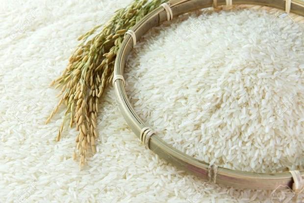 Indonesia ve obligatoria importacion de arroz por El Nino hinh anh 1