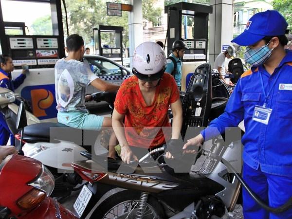 Vietnam determina aumentar uso de biogasolina hinh anh 1