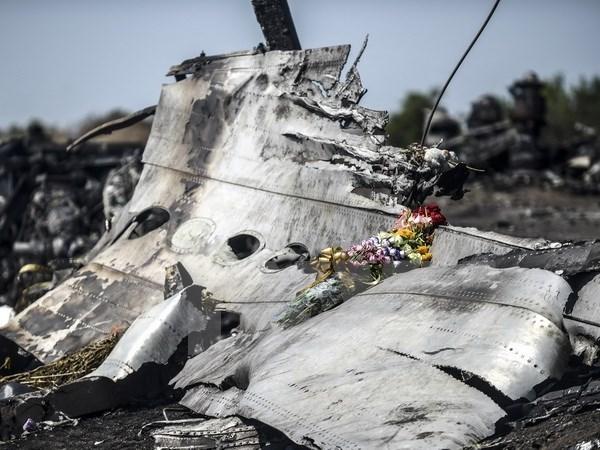 Equipo de investigacion sobre MH17 establecera tribunal independiente hinh anh 1