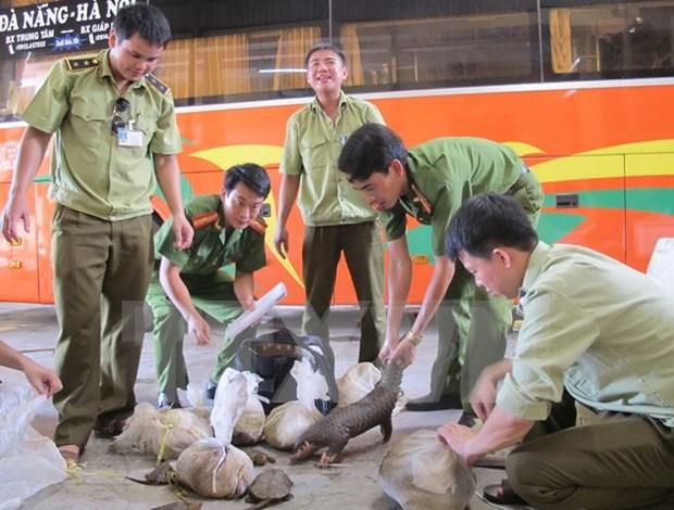 Honran a vietnamitas por esfuerzos en proteccion de animales salvajes hinh anh 1