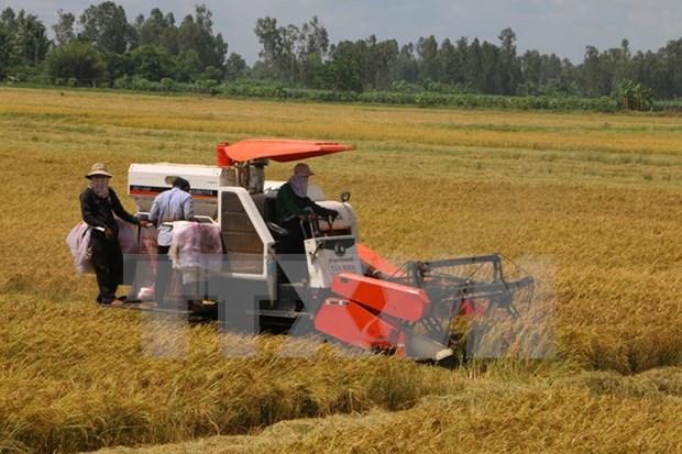 Urgen a empresas japonesas a inyectar inversion en agricultura hinh anh 1