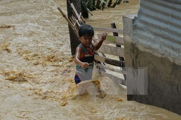 Elevan a 16 los muertos por el tifon Koppu en Filipinas hinh anh 1