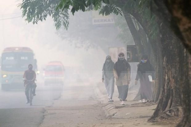 Polucion ambiental afecta a la salud de 500 mil indonesios hinh anh 1