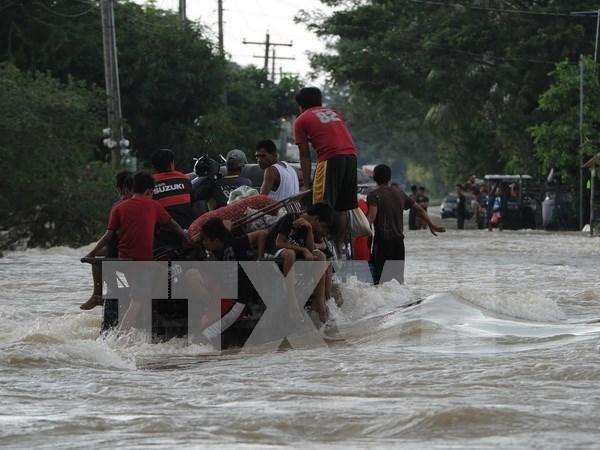 A 47 asciende numero de muertos por tifon Koppu en Filipinas hinh anh 1