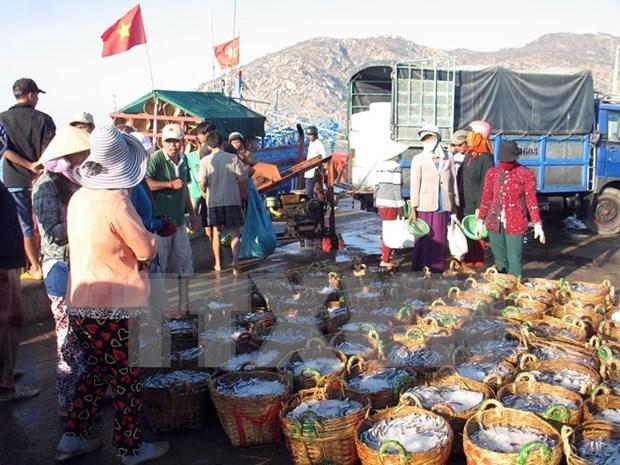 Vietnam adquiere experiencias noruegas en economia maritima hinh anh 1