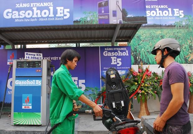 Impulsan propaganda sobre uso de bio-combustible en Vietnam hinh anh 1