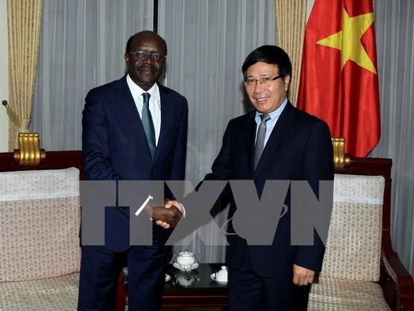 Medio Oriente - Africa, mercado potencial para empresas vietnamitas hinh anh 1