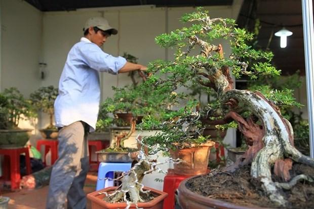 Festival de Agricultura presenta destacados productos sectoriales hinh anh 4