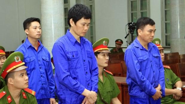 Sentencian a 12 anos de prision a directivo de proyecto ferroviario hinh anh 1