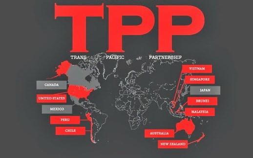 Ventajas y retos del TPP para agricultura bajo lupa de expertos hinh anh 1