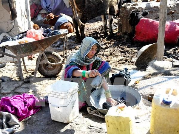 Vietnam envia condolencias a Pakistan y Afganistan por terremoto hinh anh 1