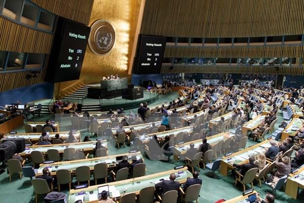Vietnam saluda resolucion de ONU sobre cese del bloqueo contra Cuba hinh anh 1