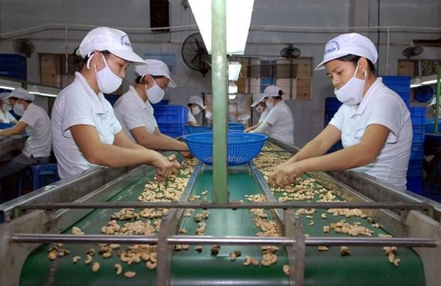 Dispuesto UE apoyar penetracion de productos vietnamitas en Europa hinh anh 1