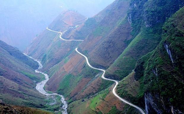 """""""Paraiso de flores de alforfon"""" en Vietnam ve alud de turistas hinh anh 6"""