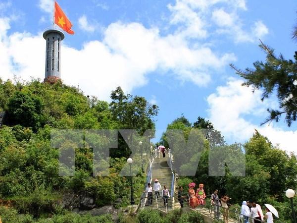 """""""Paraiso de flores de alforfon"""" en Vietnam ve alud de turistas hinh anh 5"""