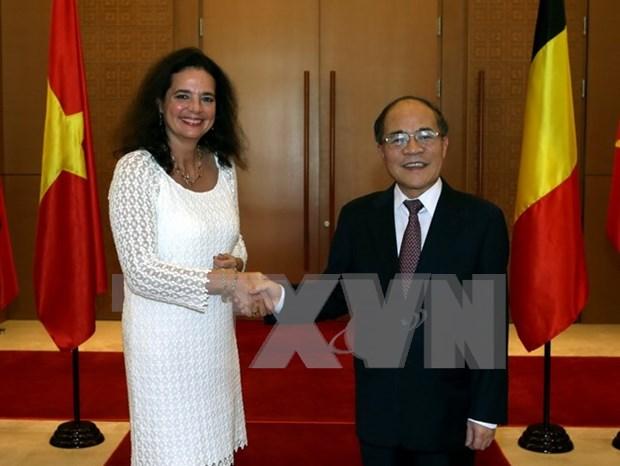 Vietnam y Belgica robustecen relaciones parlamentarias hinh anh 1