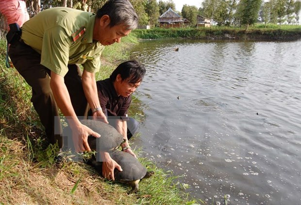 Continua apoyo danes a Vietnam en preservacion de biodiversidad hinh anh 1