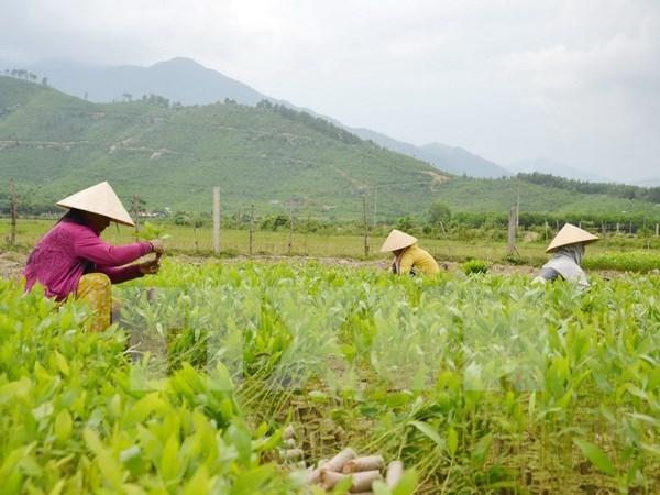 Participa Vietnam en Conferencia de Cancilleres de ASEM hinh anh 1