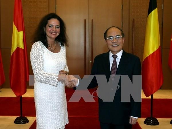 Presidenta del Senado belga culmina fructifera visita a Vietnam hinh anh 1