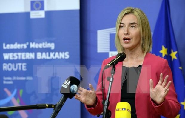 UE insta respetar ley global en solucion de diferendos en Mar del Este hinh anh 1