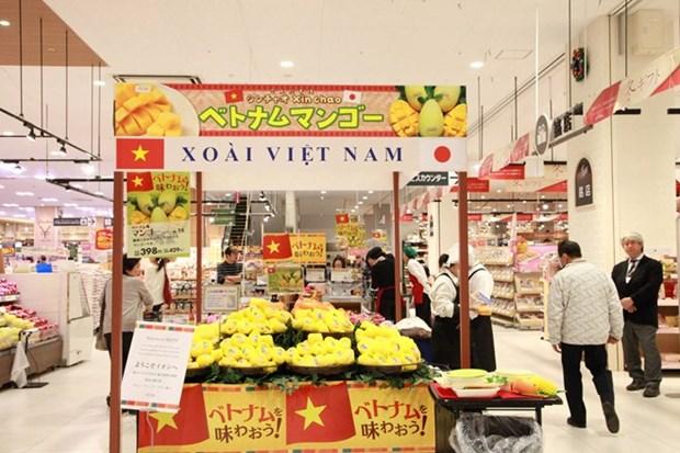 Mango vietnamita penetra en el mercado de Japon hinh anh 1