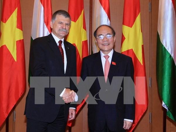Vietnam: Hungria es amigo confiable en la UE hinh anh 1