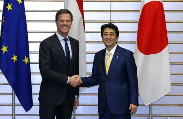 Japon y Holanda expresan preocupaciones por tensiones en Mar del Este hinh anh 1